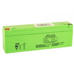 Queen Alarm SS_12V2.2AH 12V / 2.2 Amp battery.